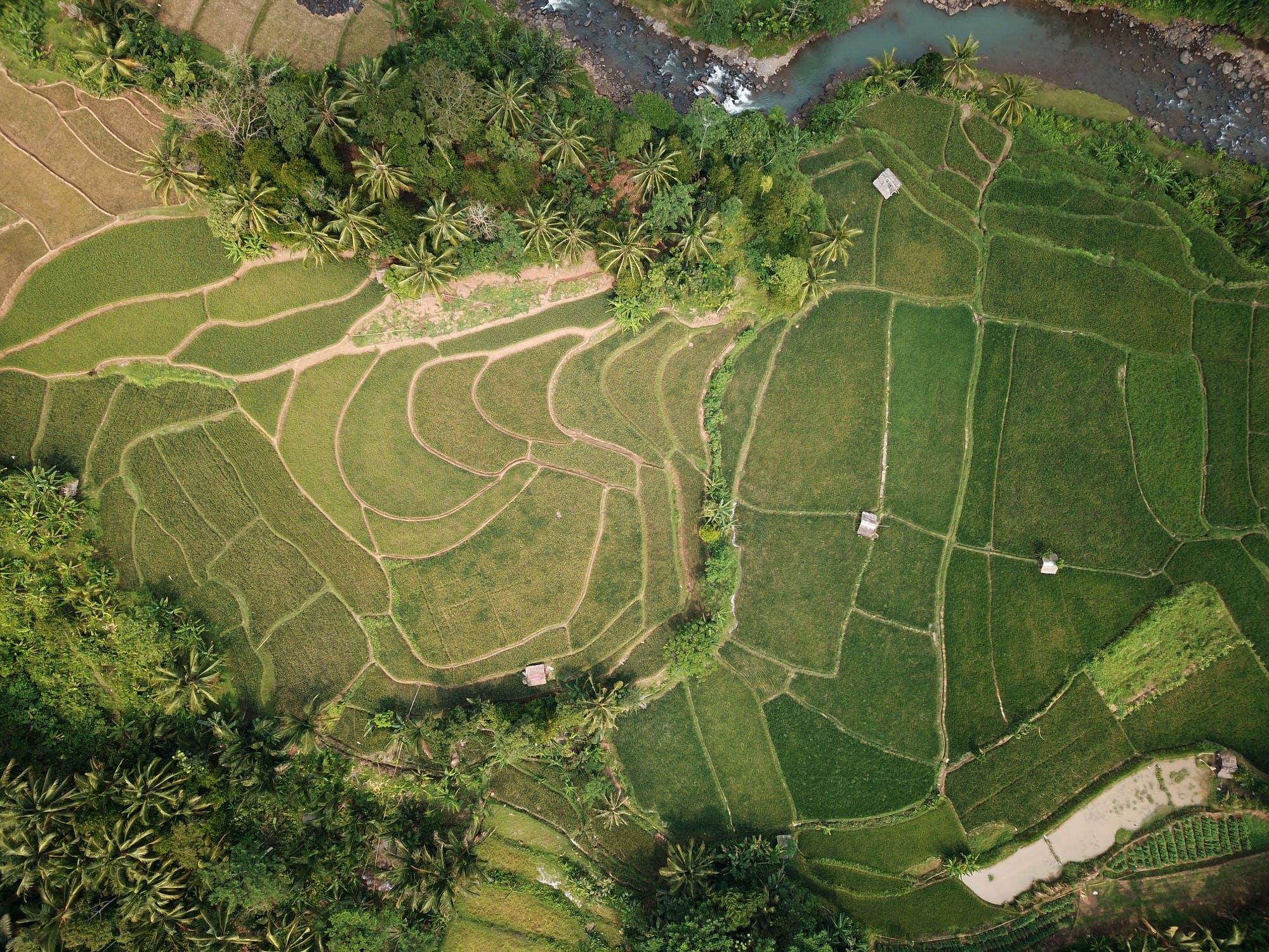 Jual Karpet Frontier di Surabaya